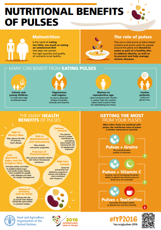 Os desafios nutricionais no tratamento de pacientes acometidos com a caquexia associada a sida 9