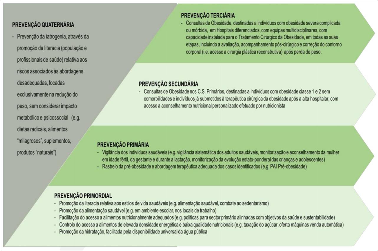 Proposta de modelo conceptual para a abordagem do excesso de peso em Portugal 1